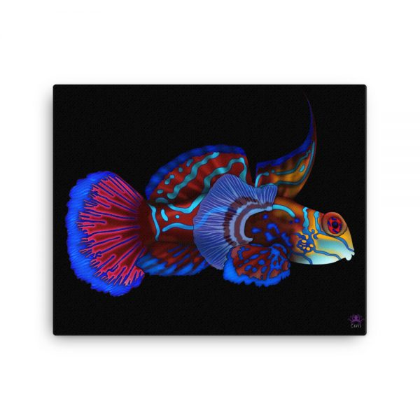 CAVIS Mandarinfish Gallery Wrapped Canvas Wall Art 16x20