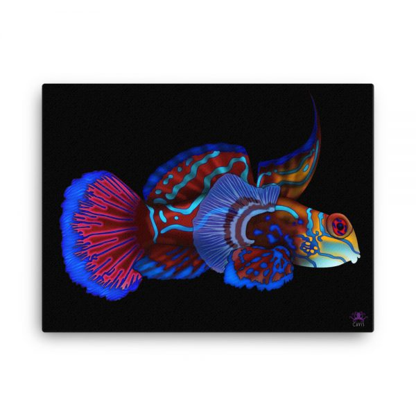 CAVIS Mandarinfish Gallery Wrapped Canvas Wall Art 18x24