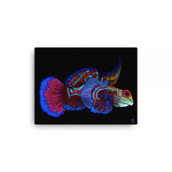 CAVIS Mandarinfish Gallery Wrapped Canvas Wall Art 12x16