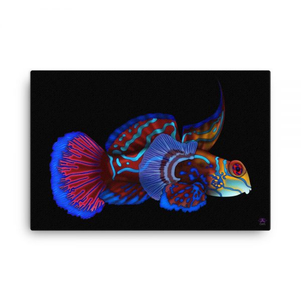 CAVIS Mandarinfish Gallery Wrapped Canvas Wall Art 24x36